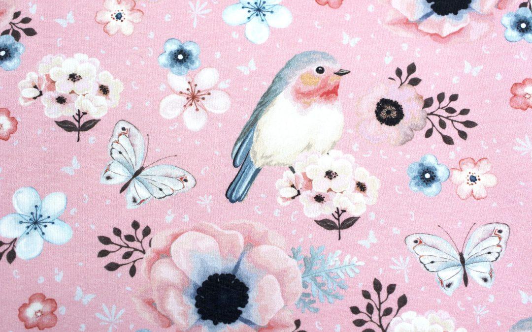 Dresówka wzór pętelka bird pink