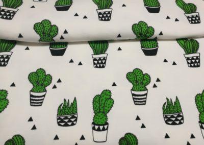 Dresówka wzór pętelka kaktusy na białym