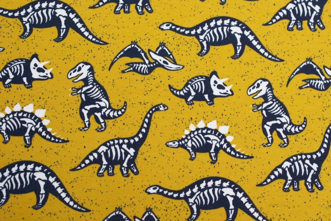 dresówka wzór pętelka BONES AND DINOSAURS YELLOW